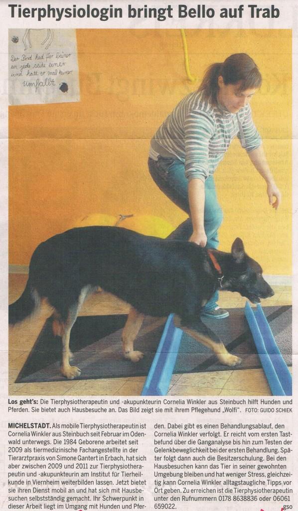 Zeitungsartikel 12.03.2012